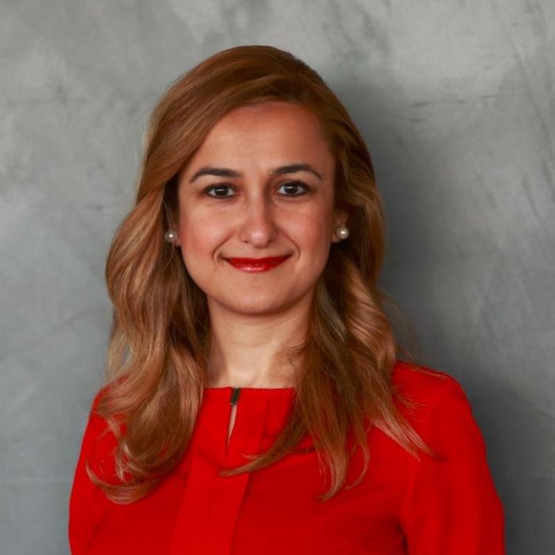 Ayça Atay Özen, MBA, PMP, PMI-ACP
