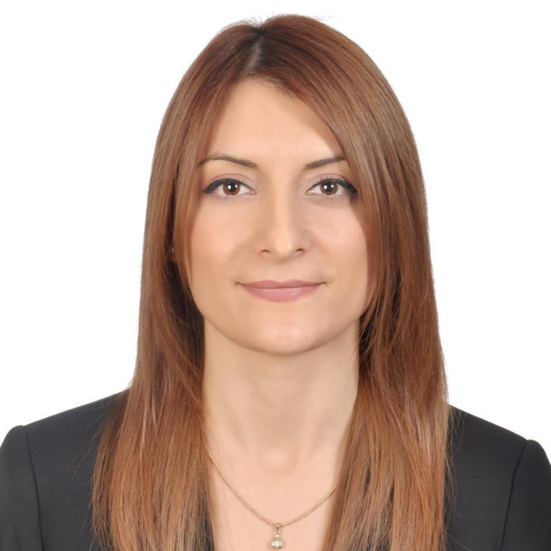 Songül Alemdar, PMP®, PSM I